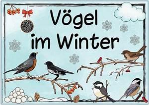 Vögel Im Winter Kindergarten : ber ideen zu gruppe auf pinterest kameras ~ Whattoseeinmadrid.com Haus und Dekorationen