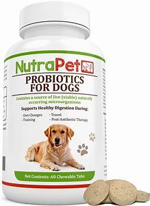 Best Rated In Dog Probiotic Supplements  U0026 Helpful Customer Reviews