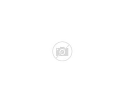 Clipart Svg Salon Barber Hairdresser Hairdressing Parrucchiere