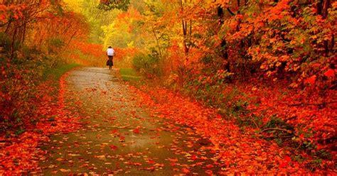 autumn wallpapers nature autumn desktop wallpapers