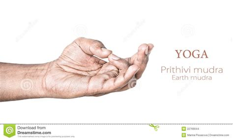 Yoga Prithivi Mudra Stock Photo Image Of Buddhist, Divine. Horoscopeposts S Signs. Poster Signs. Candy Table Signs Of Stroke. Playoff Signs Of Stroke. Heat Stress Signs Of Stroke. Wonderful Signs. Meanings Signs. Seizures Signs