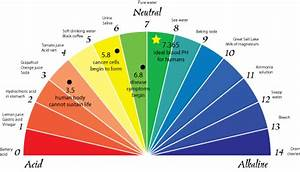 Healthy Blood Ph Levels Feel And Look Good Now