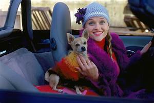 Legally Blonde - Movies Photo (8700761) - Fanpop