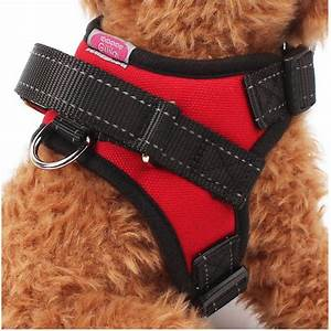 Gililai Adjustable No Pull Dog Collar Harness - Best for ...