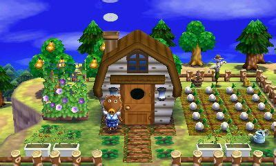 animal crossing happy home designer joan turnip farm