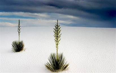 Sands Mexico Widescreen Wallpapers Wallpapersafari