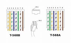 Armado Y Ponchado De Cables Ethernet