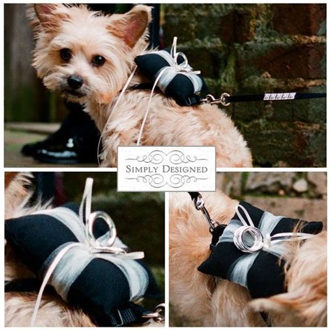 my dogs will need intense training from now i do i do in 2019 dog wedding wedding