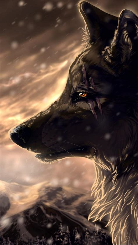 Wolf Anime Wallpapers - anime wolf wallpaper wallpapersafari