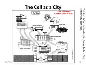 Cell City Worksheet Answers - Sharebrowse