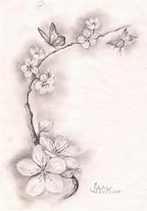 Phoenix Bird Drawing Black And White Cherry Blossom Tattoos 5 New Cherry