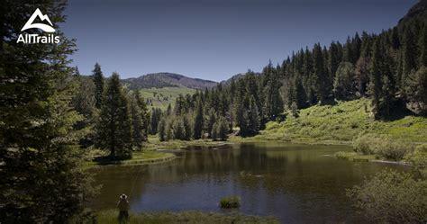 alturas california creek pine trail alltrails map trails modoc near cities location