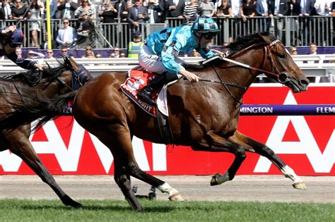 melbourne cup winners entered   australian cup