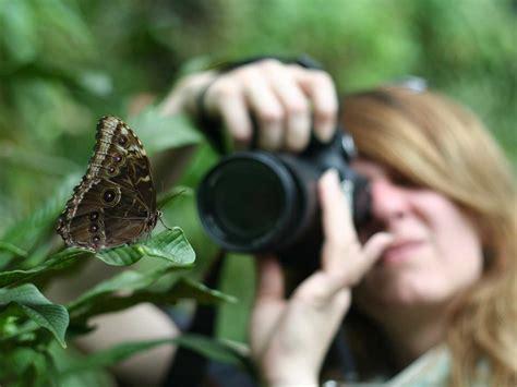 12 Tips For Better Macro Photography Saga