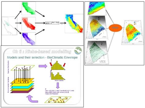 D1t2 Canonical Ecological Niche Modeling