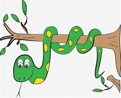 Snake Tree Clipart Cartoon Branch Clip Serpent