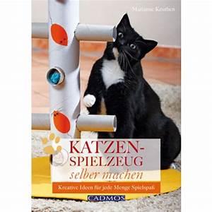 Katzenspielzeug Selber Machen Karton : katzenspielzeug selber machen ~ Frokenaadalensverden.com Haus und Dekorationen