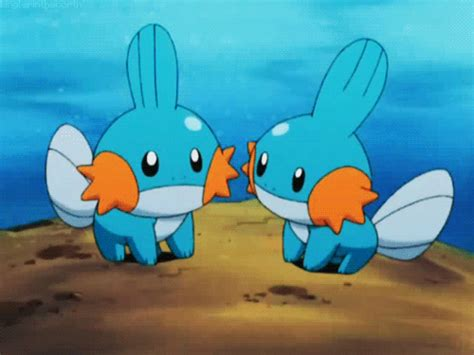 Two Cute Little Mudkips Together