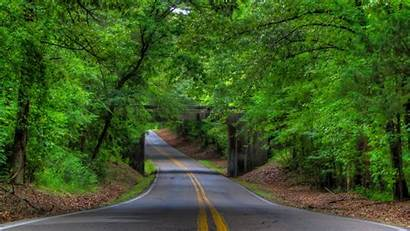 Trees Road Tree Forest Landscape Wallpapers Bridge