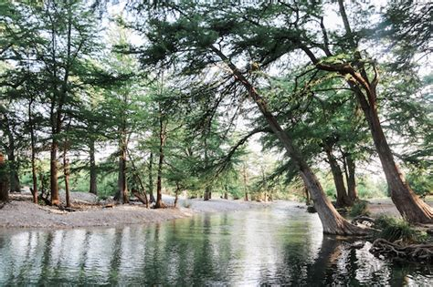 river bluff cabins tx hill country frio river coulter