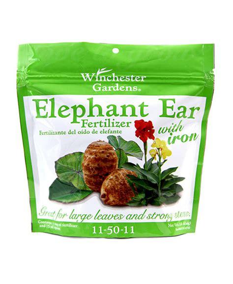 best fertilizer for elephant ears elephant ear fertilizer 1 lb bag winchester gardens