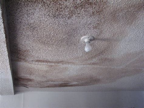 popcorn ceiling repair removing mold from popcorn ceiling best image wallpaper