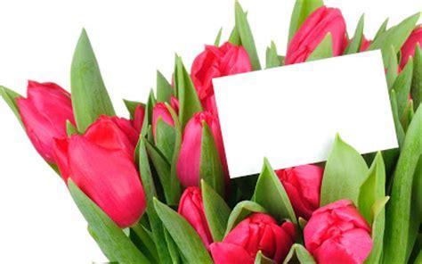 banco de im 193 genes im 225 genes de flores para el d 237 a de las madres 33 elementos