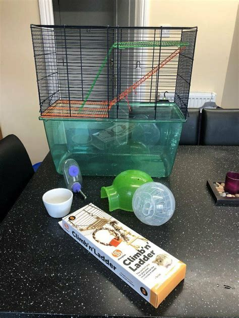 delivry pet gerbil hamster guinea pig burrowing cage