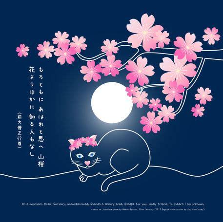 pretty neko cat  sakura cherry blossoms  waka