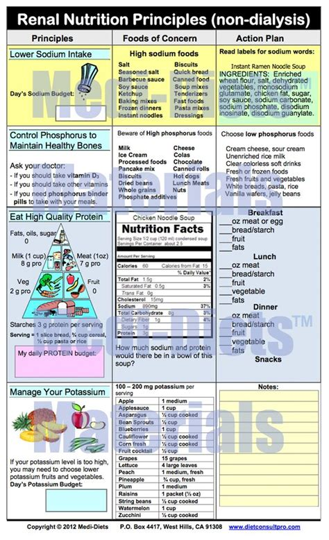 renal nutrition principles  dialysis health