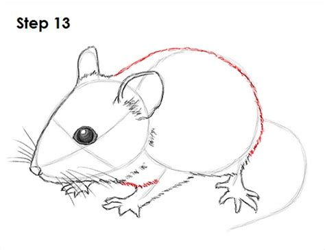 draw  mouse video step  step pictures
