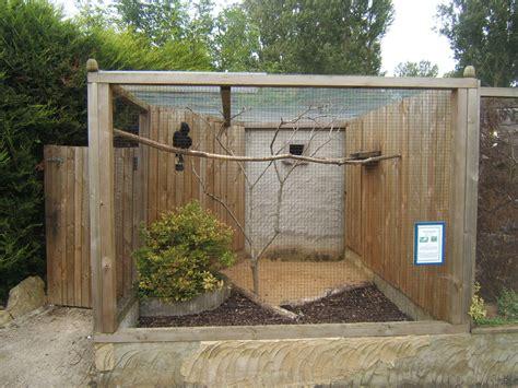sugar glider cage view of taritic hornbill aviary birdland park gardens