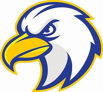 Falcon Mascot Clipart Clipground