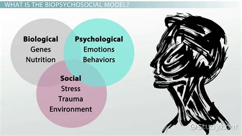 5 perspective of psychology Psychology is an academic and applied discipline involving the scientific study of mental processes and behavior psychology also refers to the application of such knowledge to various spheres of human activity, including relating to individuals' daily lives and the treatment of mental illness.