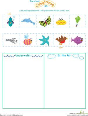 categorizing worksheets  kindergarten insects
