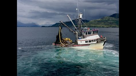 commercial fishing  alaska  youtube