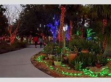 Botanical Gardens Fayetteville Nc Lights Garden Ftempo