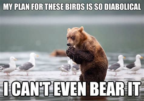 Funny Bear Meme - 34 most funny bear meme pictures