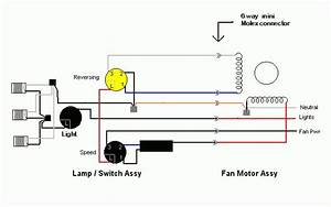 20 Elegant Harbor Breeze Fan Switch Wiring Diagram