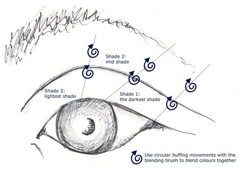 Diagram For Eye Makeup by Performance Preparedness The It All
