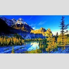 Ultra 4k Wallpapers Design For Hp Laptop Download  Hd Wallpaper 4 Us  Hd Wallpaper 4 Us In