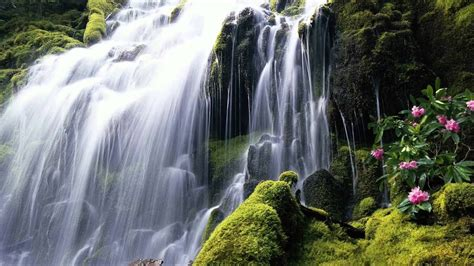 Waterfall Picture Hd by Beautifull Hd Waterfall Wallpapers