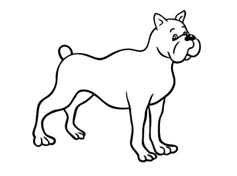 drawing boxer dog coloring pages  place  color
