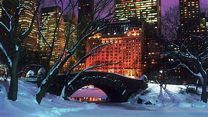 Central Park Winter York Christmas Desktop Night