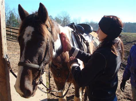 horseback riding ridge georgia ride appreciated brush sure him could much