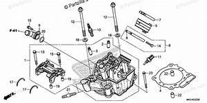 Honda Motorcycle 2018 Oem Parts Diagram For Cylinder Head