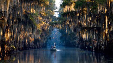 caddo lake txla   lakes   south