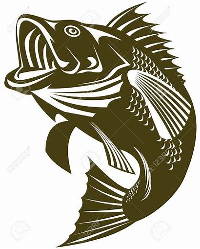 Bass Fish Largemouth Vector Outline Clipart Jumping