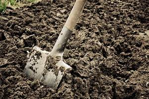Lockere Erde Faules Holz : mulchfolie richtig verlegen so gehen sie vor ~ A.2002-acura-tl-radio.info Haus und Dekorationen