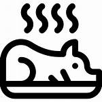 Pig Roasted Icon Puerto Icons Killeen Rican